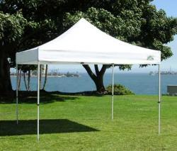 10 x 10 Canopy (pop up)