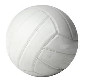 Volleyball with net